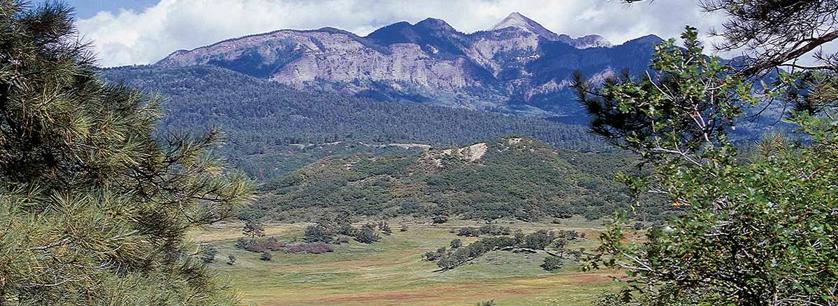 pagosa springs mountain range real estate